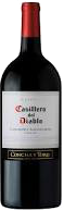 CASILLERO DEL DIABLO CAB 750ML Wine RED WINE