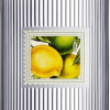 THREE OLIVES CITRUS 1.75L Spirits VODKA