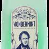 WONDERMINT SCHNAPPS LIQ 750ML Spirits CORDIALS LIQUEURS